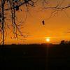 Abend, Sonnenuntergang, Gransee, Dezember