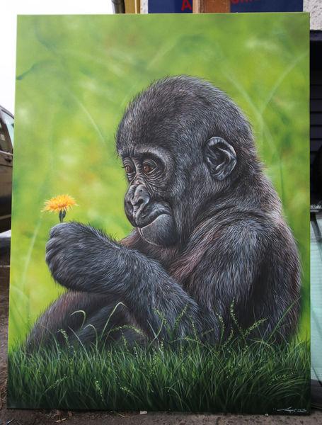 Gorilla, Sprühdose, Airbrush, Affe, Malerei