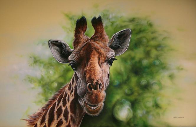 Malerei, Figural, Giraffe