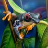Frosch, Sprühdose, Malerei, Airbrush