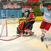 Malerei, Sport, Eishockey, Mann