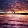 Collage, Himmel, Spiegelung, Kontrast