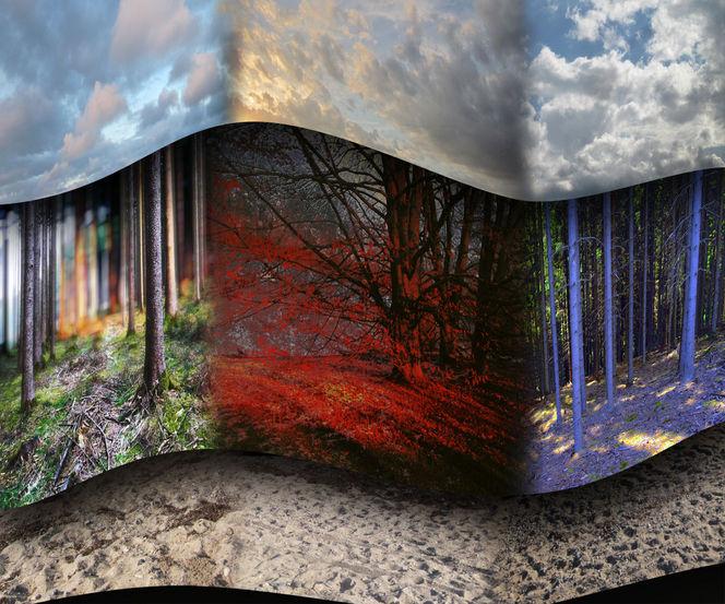 Erde, Licht, Shade, Welle, Erstellt, Collage