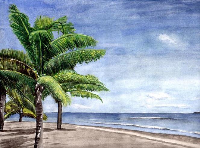 Palmen, Aquarellmalerei, Wasser, Strand, Himmel, Baum
