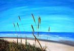 Wasser, Himmel, Pflanzen, Strand
