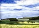 Baum, Landschaft, Aquarellmalerei, Himmel