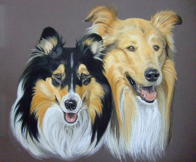 Hund, Malerei, Paar, Figural, Pastellmalerei, Portrait
