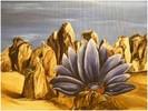 Surreal, Surrealismus, Blume, Felsen