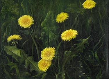 Malerei, Löwenzahn