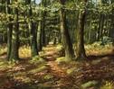 Ölmalerei, Malerei, Waldweg,