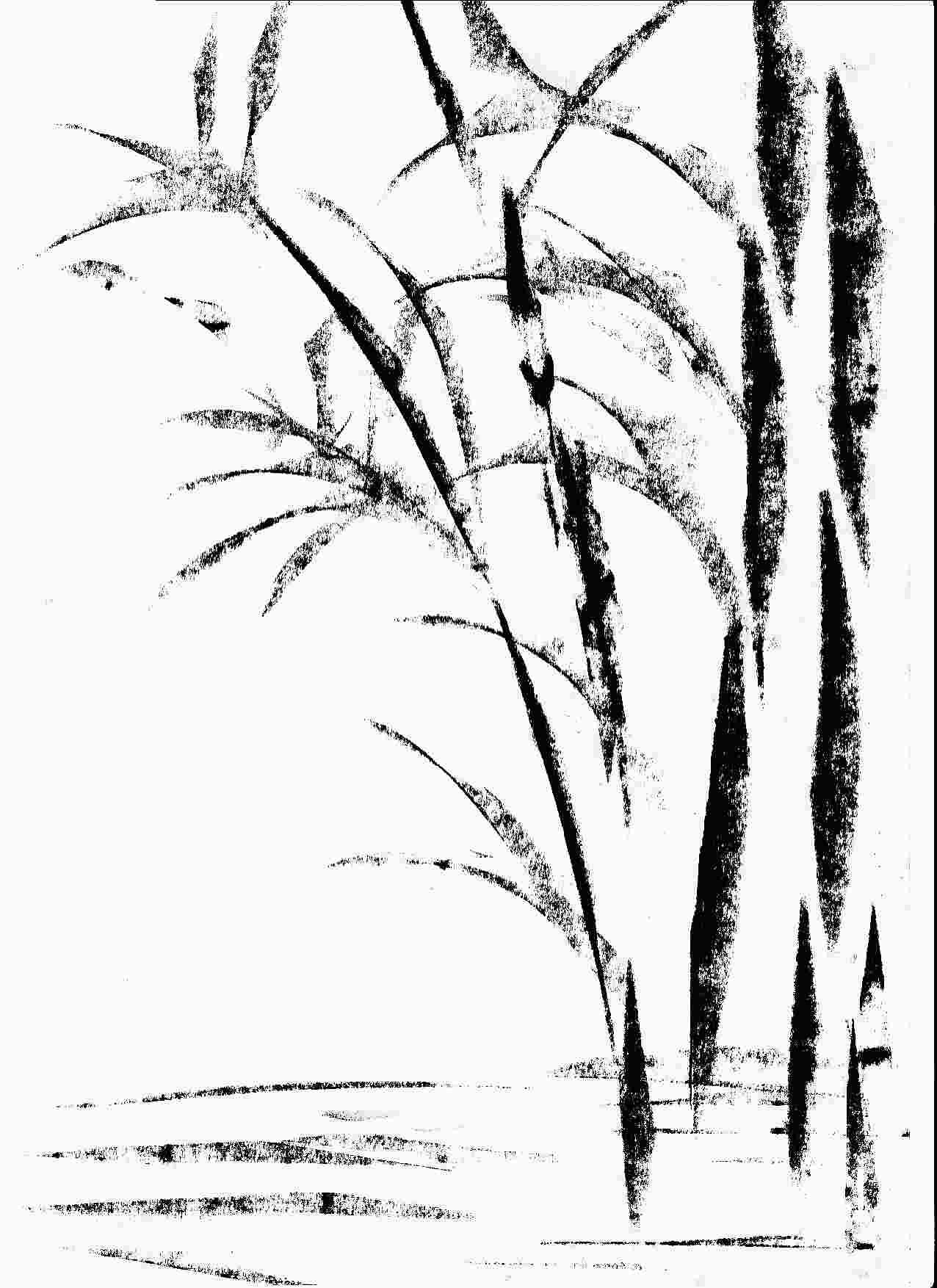 Weiß, Zeichnung, Schwarz, Skizze. 7. Bambus