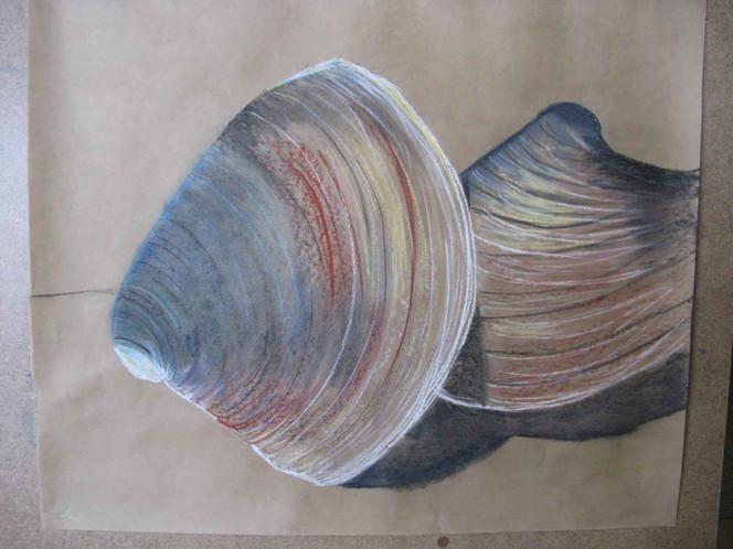 Meer, Grafik, Pastellmalerei, Muschel, Malerei