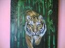 Bambus, Tiger, Zeichnungen, Tiere