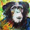 Tiere, Blick, Ausdruck, Affe