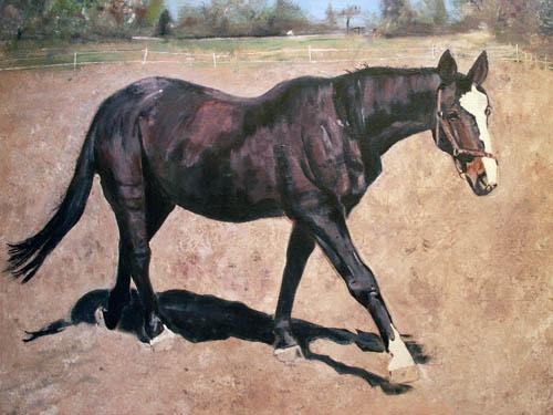 Pferde, Acrylmalerei, Malerei, Tiere