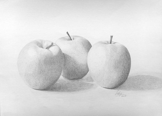 Apfel, Zart zeichnen, Golden delicius zeichnen, Bleistiftzeichnung, Delicius apfel zeichnen, Stillleben