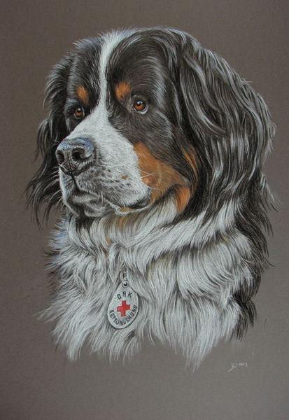 Dogpicture, Animalpainting, Hund, Tiere, Portrait, Malerei