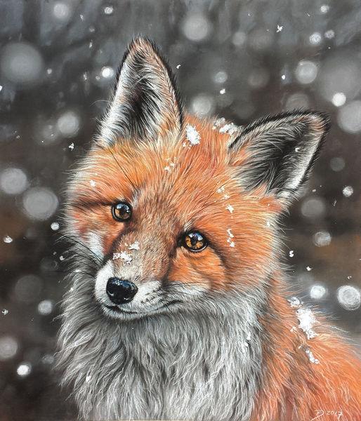Fuchs, Winter, Schnee, Malerei