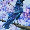Krähe, Baum, Ölmalerei, Rabe