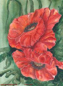 Blumen, Rot, Blüte, Aquarellmalerei