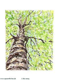 Grün, Grafik, Aquarellmalerei, Baum