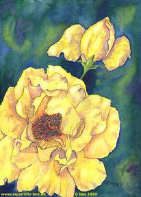 Blumen, Grafik, Gelb, Aquarellmalerei