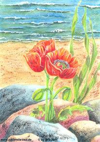 Aquarellmalerei, Strand, Mohn, Grafik