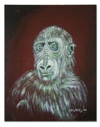 Affe, Portrait, Berlin, Tiere