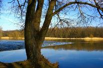 Landschaft, Fotografie, Frankfurt, Fluss