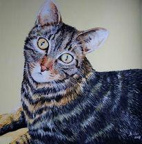 Figural, Malerei, Katze, Augen