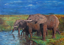 Elefant, Tränke, Steppe, Herd