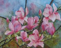 Malters, Rosa, Tulpenbaum, Ziergehölz