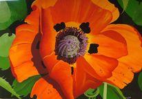 Luzern, Acrylmalerei, Orange, Schweiz