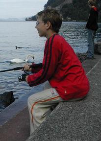 Fotografie, Wasser, See, Fisch