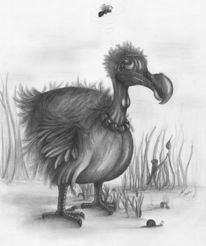 Vogel, Zeichnung, Bleistiftzeichnung, Surreal