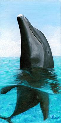 Flipper, Acrylmalerei, Hai, Unterwasser