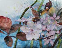 Obstblüte, Blüte, Zierkirschen, Aquarellmalerei