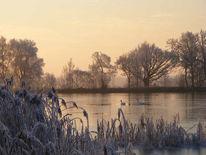 Fotografie, Wintermorgen, See