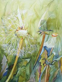 Löwenzahn, Blumen, Sommer, Blüte
