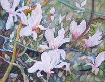Aquarellmalerei, Blüte, Frühling, Magnolien