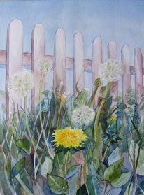 Löwenzahn, Aquarellmalerei, Pusteblumen, Blumen