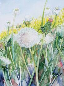 Löwenzahn, Aquarellmalerei, Blumen, Pusteblumen