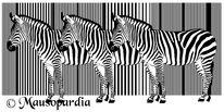 Afrika, Digitale kunst, Grafik, Jüngling