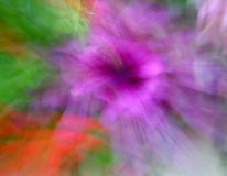 Blüte, Lightpainting, Wald, Abstrakt