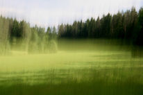 Verwischen, Lichtmalerei, Wald, Lightpainting