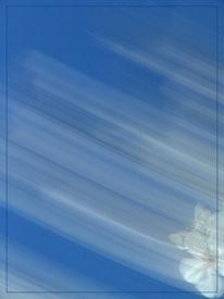 Lichtmalerei, Wischeffekt, Abstrakt, Verwischen