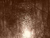Landschaft, Fotografie, Glitzern, Sonne