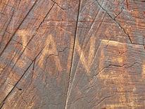 Holz, Reiseimpressionen, Initialen, Struktur