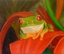 Rotäugig, Grün, Wald, Frosch