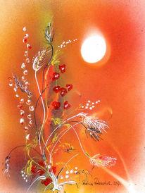 Sonne, Blüte, Orange, Wiese